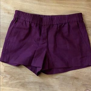 JCrew Elastic Waistband Summer Shorts